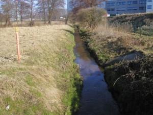 Dümmerbach